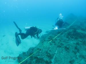 Monitoreo en Arrecifes Rocosos del Golfo de California