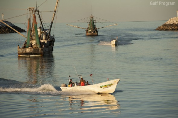 Barcos y pangas SF_GulfProgram(wm)