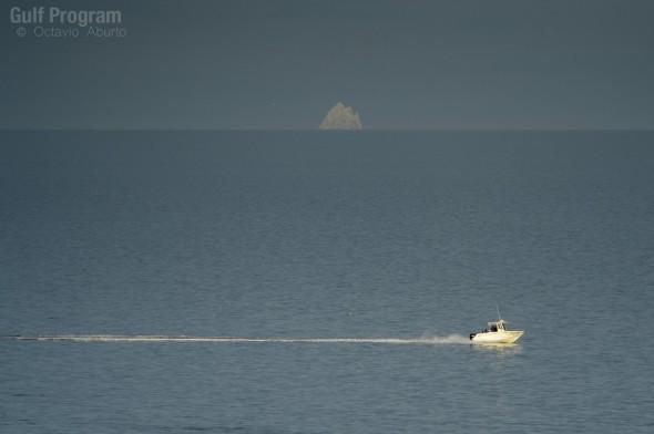 En el alto golfo la conservación y la pesca parecen no ser compatibles