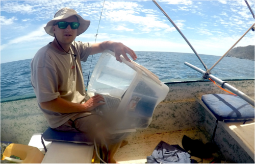 Me on survey pinging away with the active acoustics – counting the fish