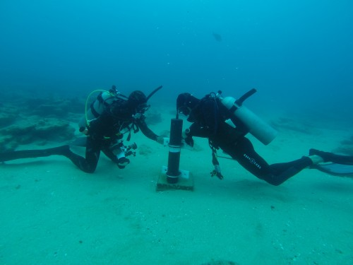 Figure 3. Dive Master David Castro (left) and Project leader Tim Rowell (right) work to finish the redeployment of a hydrophone, an underwater listening device meant to record the sounds produced by male Gulf Grouper during courtship and spawning. Photo: Brad Erisman