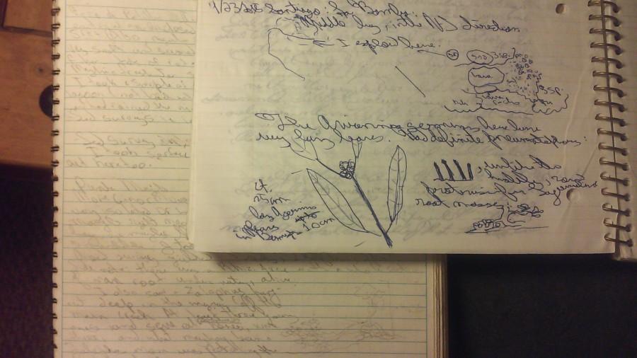 Matts notebook