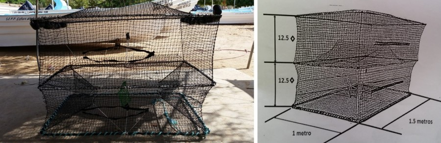 Prototype of collapsible fish trap. Photo credit: Josué Montañez