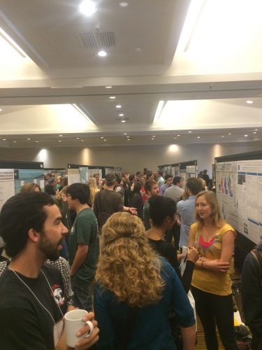 How scientists communicate among scientists during a morning poster session. Photo: Rachel Labbe-Bellas