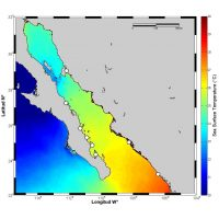 Dealing with dynamic habitats: recovering temperature data loggers within Baja California mangroves
